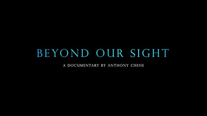 Beyond Our Sight