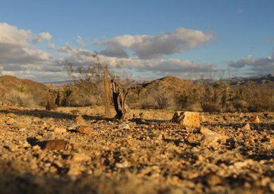 Desert-014