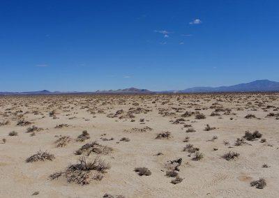 Desert-019