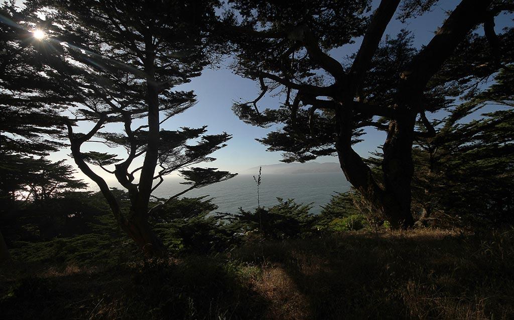 San-Francisco-020