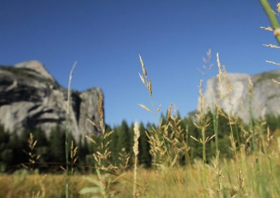 Yosemite-003